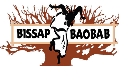 Little Baobab - Bissap Baobab Picture